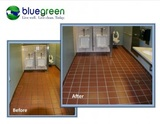 Profile Photos of Bluegreen Carpet And Tile Cleaning
