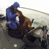 Profile Photos of Green Bay Trophy Fishing