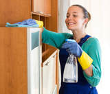 Profile Photos of House Cleaning Gilbert