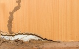 Profile Photos of Affordable Termite Control - Riverside