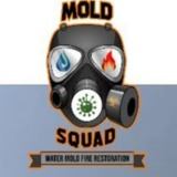 Mold Squad - Mold Inspection & Testing Company