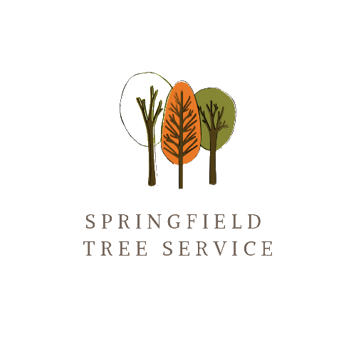 Profile Photos of Springfield Tree Service Pros 2429 Westchester Blvd - Photo 1 of 1