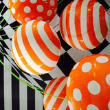 New Album of Balloons & More Party Store