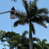 Profile Photos of Insight Environmental Solutions