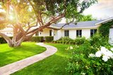 Tree Services Houston, Houston Tree services, Tree Houston, Emergency Services, Recurring Maintenance, Tree Removal, Stump Removal, Tree Pruning