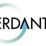 Verdantis - Change Management and Smart Technology Solutions for Business