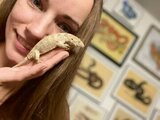 Show Me Reptile and Exotics Show (Greenville), Greenville