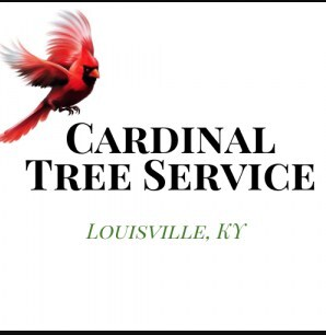 Profile Photos of Cardinal Tree Service Louisville 2858 Frankfort Ave - Photo 1 of 1