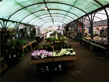 Hillier Garden Centre Hemel Hempstead Leighton Buzzard Road, Piccotts End