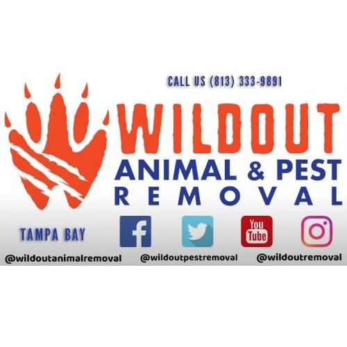 Profile Photos of Wildout Animal & Pest Removal Tampa 13815 Cypress Village Circle - Photo 1 of 4