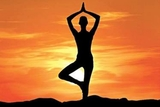 yoga classes in chandigarh | yoga instructor at home | yoga classes in, Chandigarh