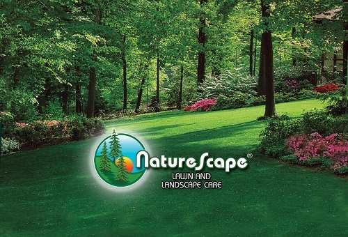 Profile Photos of Naturescape 2320 N Oakland Ave - Photo 2 of 4
