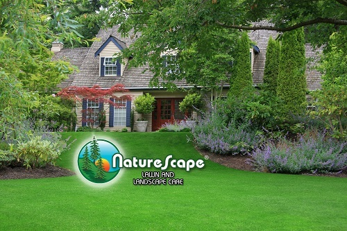 Profile Photos of Naturescape 2320 N Oakland Ave - Photo 3 of 4