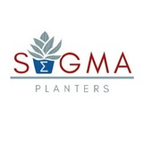 Sigma Planters 10 Storie St