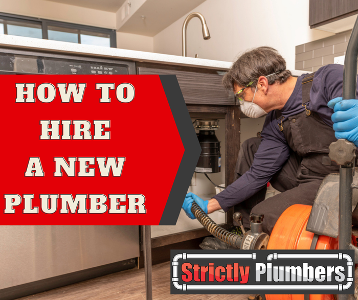 New Album of Strictly Plumbers Suite G. 779 3rd Ave - Photo 2 of 17