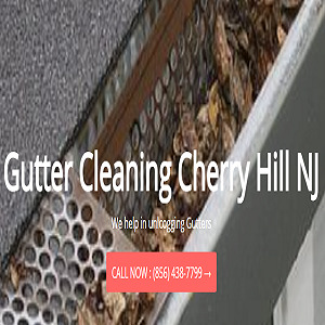 Profile Photos of Gutter Cleaning Cherry Hill Cherry Hill - Photo 1 of 1
