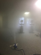 Mold Busters Greenville, Greenville