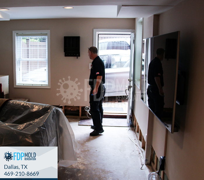 New Album of FDP Mold Remediation 2611 Ross Ave - Photo 2 of 6