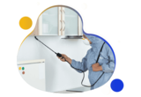 Bed Bug Control Adelaide, Adelaide