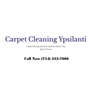 Profile Photos of Carpet Cleaning Ypsilanti 8540 Glendale Dr - Photo 1 of 1