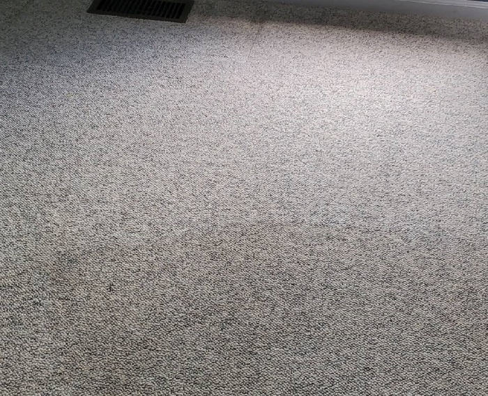 New Album of Carpet Cleaning Ypsilanti 8540 Glendale Dr - Photo 2 of 4