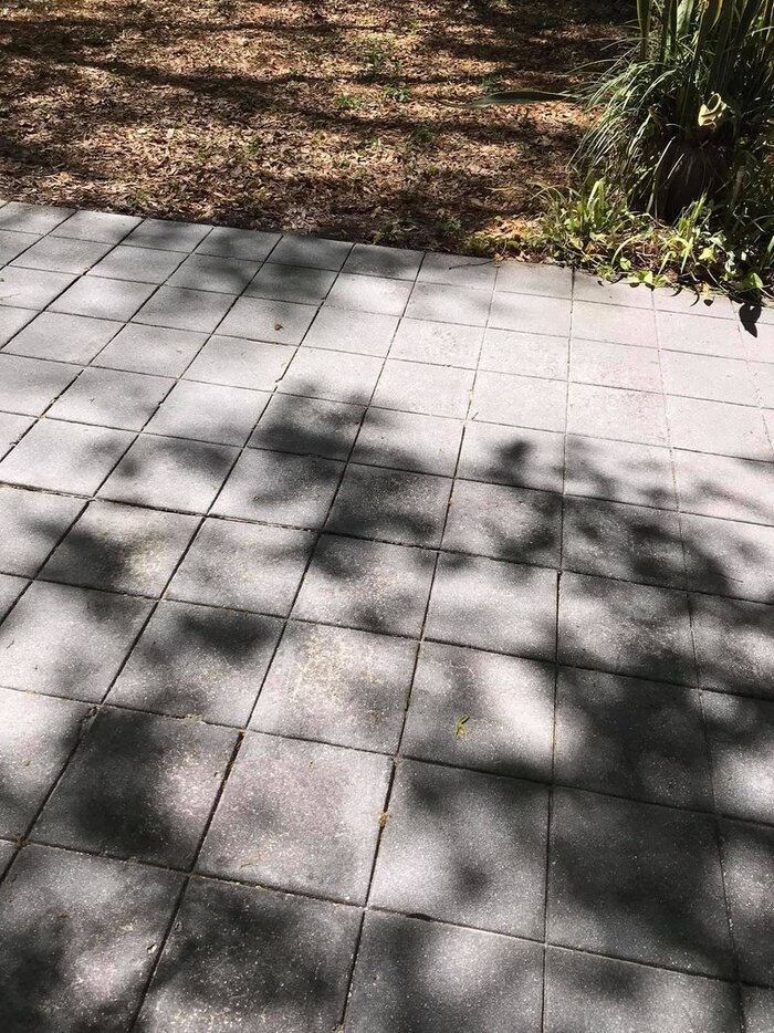 New Album of Miller's Pressure Washing 1609 E Trapnell Rd - Photo 1 of 4
