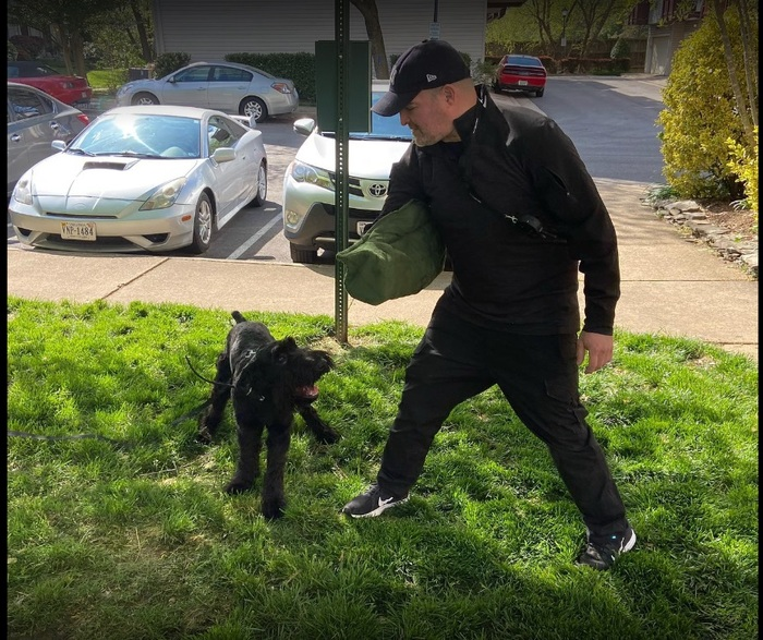 Profile Photos of Executive K-9 Protection Group, LLC 6464 General Green Way - Photo 5 of 5