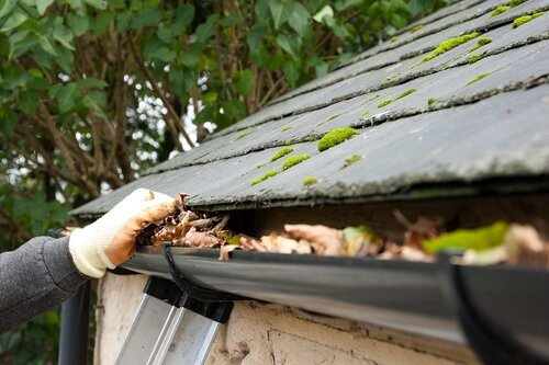 Profile Photos of Gutter Cleaning Camillus, NY 117 Munro Dr. - Photo 7 of 8