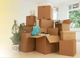 Profile Photos of Every 1 Packers and Movers