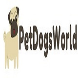 Pet Dogs World Paramount Plaza315 W 54th St suite 2