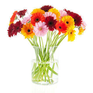 Profile Photos of Best Florist Delivery 29 E 63rd St - Photo 1 of 4