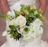 Profile Photos of Aime Peterson Flowers and Event Design