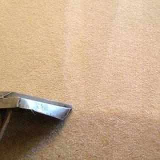 Show Me Carpet Cleaning