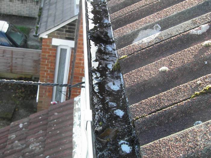 Profile Photos of GCS Gutter Cleaning Specialists 73 Park Lane - Photo 4 of 9