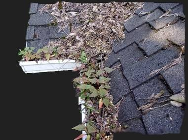 Profile Photos of GCS Gutter Cleaning Specialists 73 Park Lane - Photo 7 of 9