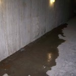 Profile Photos of ULB Dry Waterproofing