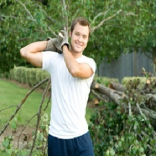 Fort Collins Tree Care, Inc.