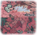 Profile Photos of Carpet Cleaning NYC 1-888-8222730   rescuecarpetny
