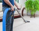 Profile Photos of Coconut Creek Carpet Cleaning Specialists