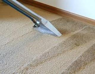 Coconut Creek Carpet Cleaning Specialists