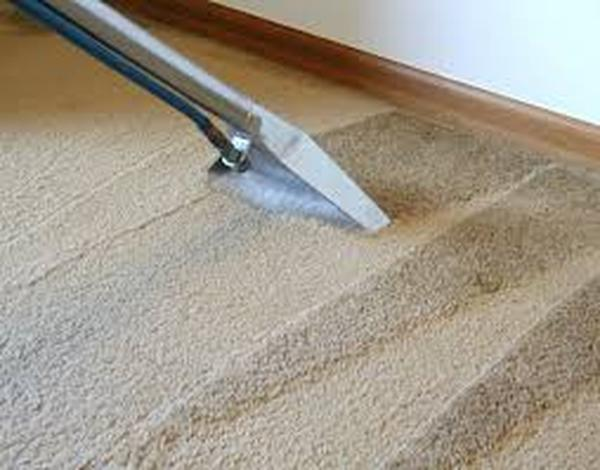 Profile Photos of Wolf Carpet Cleaning 355 Roberts Ave - Photo 2 of 9