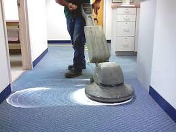 Profile Photos of Wolf Carpet Cleaning 355 Roberts Ave - Photo 5 of 9