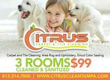 New Album of Citrus Carpet and Tile Cleaning