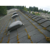 West Coast Roof Cleaning