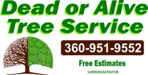 Profile Photos of Dead Or Alive Tree Service 912 Lilly Rd Ne - Photo 2 of 2
