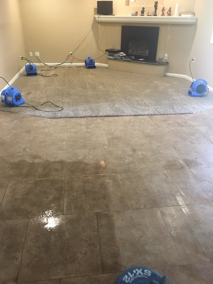 New Album of All-American Carpet Care 1343 Gehring Ct. - Photo 4 of 7