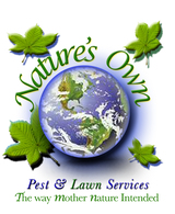 Nature's Own Chimney Cleaning 11207 Switchgrass Ln