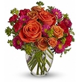 New Album of Flower Delivery
