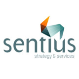Top Consulting Firms in Melbourne - Sentius Strategy