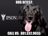 New Album of Personal Injury Attorney Utah- Ipson Law Firm PLLC